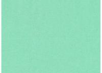 A.S. Création - Versace 4 #37050-1 vliesová tapeta s vinylovým povrchom
